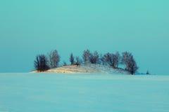 Campo nevoso del invierno Imagen de archivo