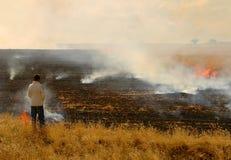 Campo no incêndio Fotos de Stock