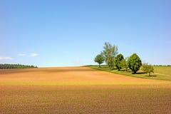 Campo no Kraichgau Fotografia de Stock