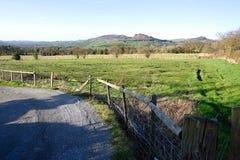 Campo no parque nacional do distrito máximo, Reino Unido Imagem de Stock