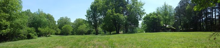 Campo no verão foto de stock royalty free