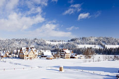 Campo no wintertime Foto de Stock Royalty Free