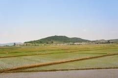 Campo norcoreano Imagen de archivo libre de regalías