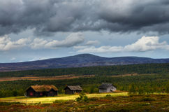 Campo Oppland de Noruega fotos de archivo libres de regalías