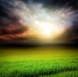 Campo oscuro del verde del cielo de la hierba con la luz del sol Fotografía de archivo libre de regalías