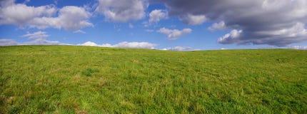Campo panoramico Immagini Stock