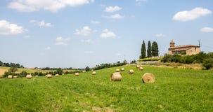 Campo perto de Alby (França) foto de stock royalty free
