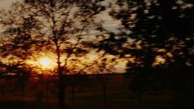 Campo pitoresco no por do sol Campos e vinhedos em Europa, vista da janela de carro Vídeo do bocado de ProRes 10 video estoque