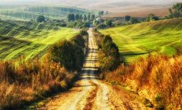 Campo campo pittoresco di autunno Immagini Stock
