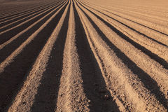 Campo Ploughed Fotos de Stock Royalty Free