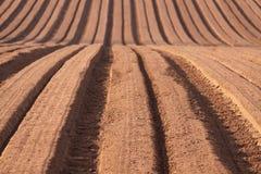 Campo Ploughed Foto de Stock
