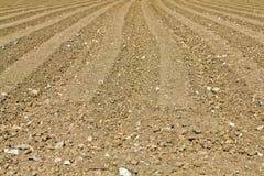 Campo Ploughed Imagem de Stock Royalty Free