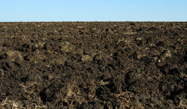 Campo Ploughed Fotografia de Stock