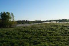 Campo por la mañana Fotografía de archivo