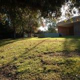 Campo por la mañana Sun fotos de archivo