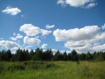 Campo, prado e céu Imagem de Stock Royalty Free