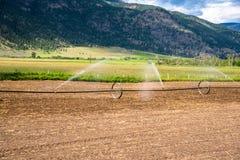 Campo que es irrigado en Sunny Summer Day fotografía de archivo