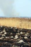 Campo quemado Foto de archivo libre de regalías