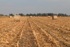 Campo raccolto con le balle della paglia in autunno Immagini Stock Libere da Diritti