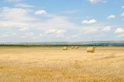 Campo raccolto con le balle della paglia in estate Fotografie Stock Libere da Diritti