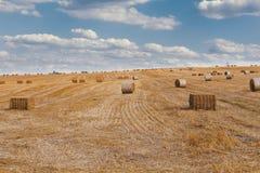 Campo raccolto con le balle della paglia in estate Immagini Stock Libere da Diritti