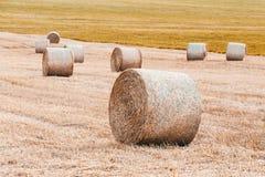 Campo raccolto con le balle della paglia in estate Fotografie Stock