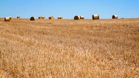 campo raccolto con le pile di paglia in Francia Immagini Stock