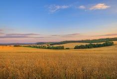 Campo, República Checa Fotografía de archivo libre de regalías