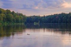 Campo, República Checa Foto de archivo libre de regalías