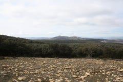 Campo roccioso Fotografia Stock