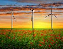 Campo rojo de la amapola con las turbinas de viento Imágenes de archivo libres de regalías