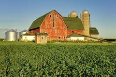 Campo rojo del granero y de la haba Fotografía de archivo libre de regalías