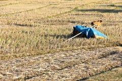 Campo rural após a colheita do arroz Fotografia de Stock Royalty Free