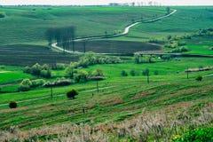 Campo rural da estrada fotografia de stock
