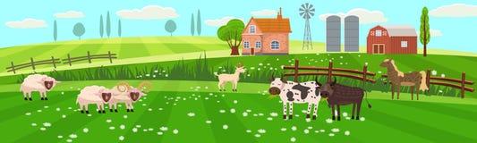 Campo rural del paisaje de la primavera con el campo de granja con la hierba verde, flores, árboles Tierras de labrantío con la c stock de ilustración
