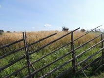 Campo rural del paisaje del molino de la cerca del trigo Imagen de archivo