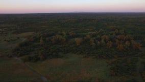 Campo rural en la puesta del sol, cantidad de la antena del abejón almacen de metraje de vídeo