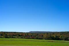 Campo rurale di Maine con gli alberi ed i mulini a vento distanti Fotografia Stock Libera da Diritti
