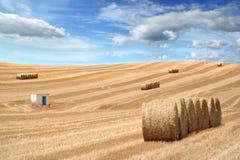 Campo rurale dopo il raccolto di stagione Fotografie Stock Libere da Diritti