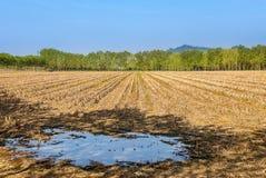 Campo rurale in Piemonte, Italia Fotografia Stock