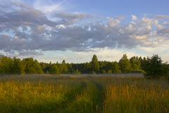 Campo ruso, región de Novgorod, Rusia Imagen de archivo