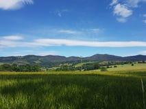 Campo in Scozia immagini stock libere da diritti