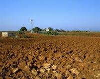 Campo seco Fotografía de archivo