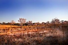 Campo seco del país Fotos de archivo libres de regalías