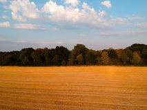 Campo segado em Alemanha com o céu azul agradável fotos de stock royalty free