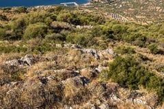 Campo solar em Grécia Foto de Stock