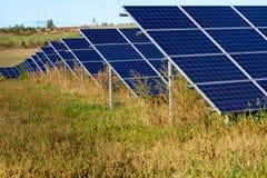 Campo solare Fotografia Stock Libera da Diritti