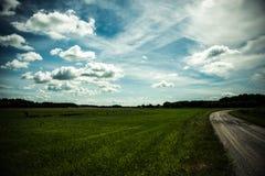 Campo soleado Fotografía de archivo