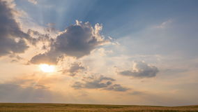 Campo soleggiato nuvoloso di estate video d archivio