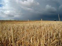 Campo sotto la tempesta fotografie stock libere da diritti